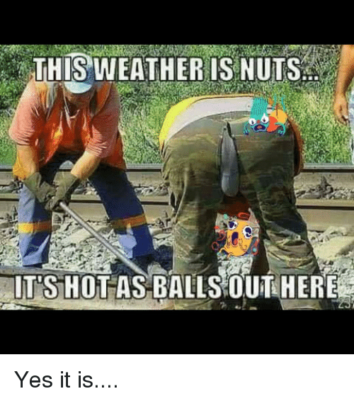 this-weather-is-nuts-its-hot-as-balls-outhere-yes-3166908
